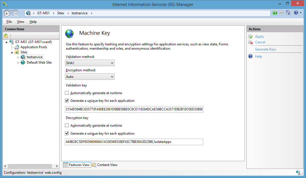 Generate Machine key using Internet Information Services (IIS) Manager