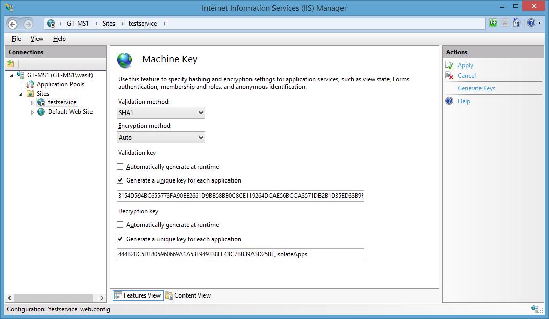 web config machine key