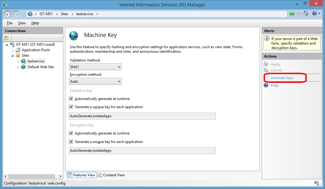 Machine key section of Internet Information Services (IIS) Manager